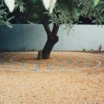 Classical variation, Onrus, South Africa, 2001